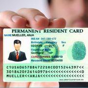 مراحل دریافت گرین کارت از ثبت نام در لاتاری تا دریافت